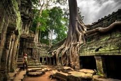 Храм Та Пром в Камбоджи