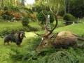 Охота в Китае как вид активного отдыха