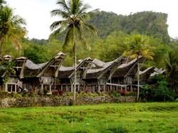 Остров Сулавеси — уникальная природа и ее редкие жители