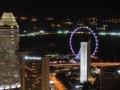 Экскурсия по ночному Сингапуру