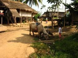 Туризм в Лаосе
